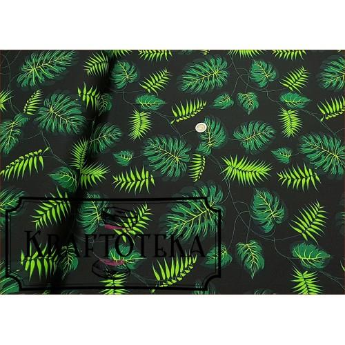 Liście Monstery Zielone na Czarnym