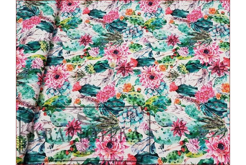WOD-Kaktusy z Kwiatem Różowym