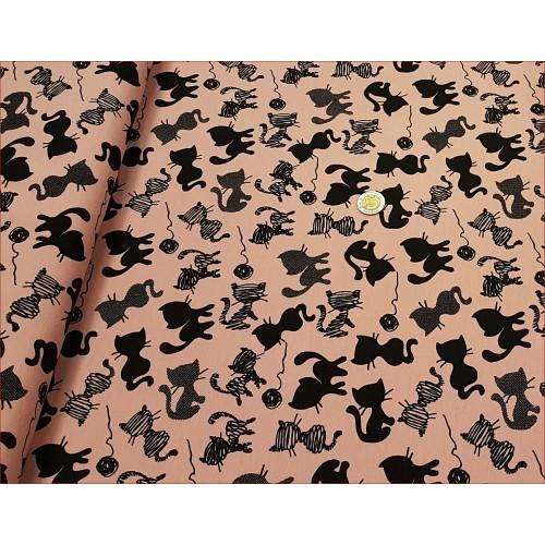 Koty Z Kłębuszkiem na Różu Brd