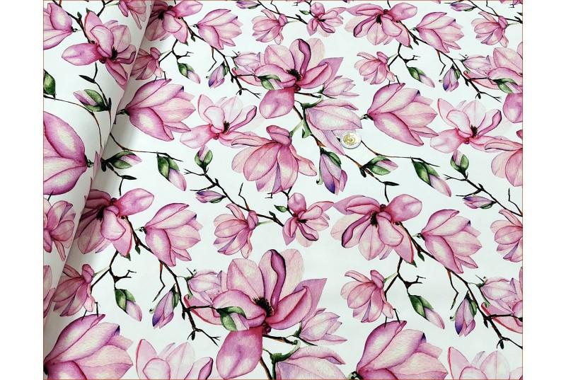 Kwiaty Magnolia na Bieli